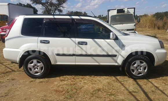 Buy Nissan X-Trail White Car in Alexandra Park in Harare