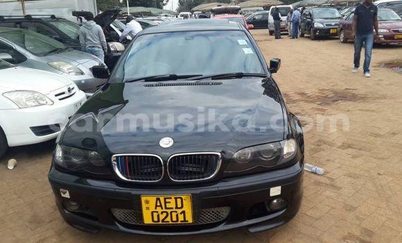 Buy BMW 3-Series Black Car in Alexandra Park in Harare