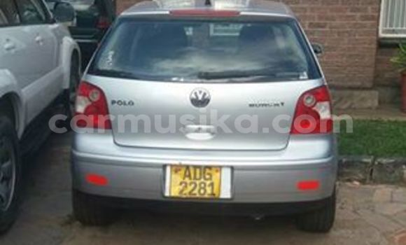 Buy Volkswagen Polo Silver Car in Alexandra Park in Harare